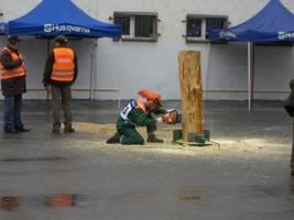 Konkurencja ścinka drzew