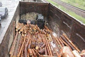 Paczki z papierosami ukryte w wagonach z drewnem