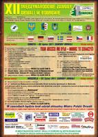 Pełen program XII Międzynarodowych Zawodów Drwali w Bobrowie