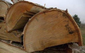 Kora drewna świeżego przylega do szczapy