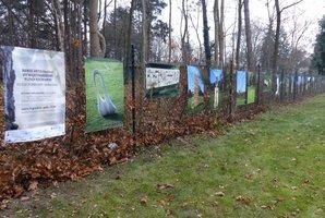 Wystawa zdjęć rzeźb na terenie kampusu Wydziału Lesśnego