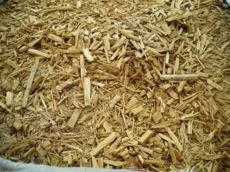 Zrębki drewniane dębowe