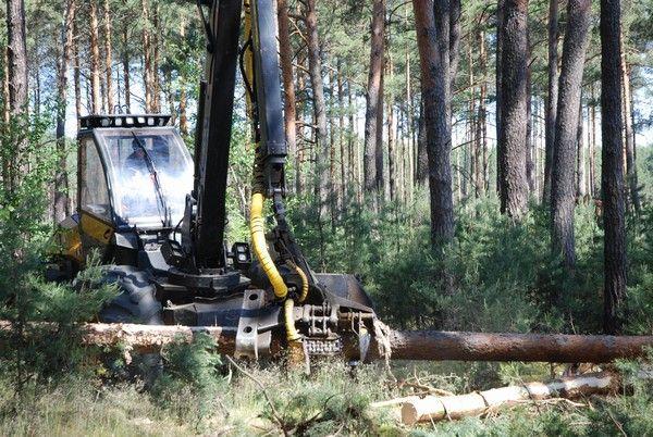 Leśnictwo eksploatacji