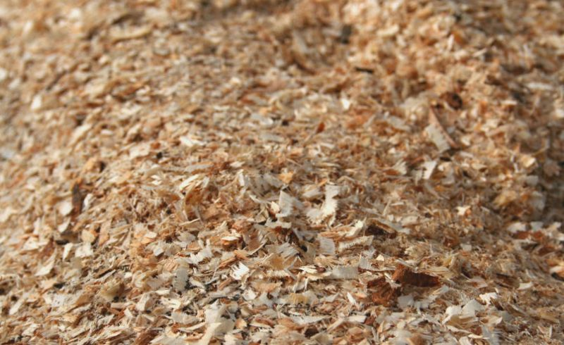Biomasa, wióry, zrębka sosnowa