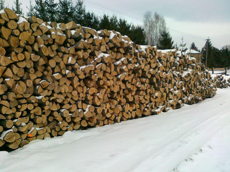 PODKARPACIE, kupie drewno opałowe duze ilośći