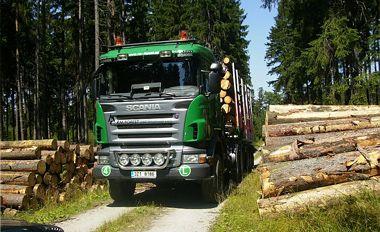 Bardzo dobryFantastyczny Transport Drewna - Zachodniopomorskie- Ogłoszenia branży drzewnej PV58